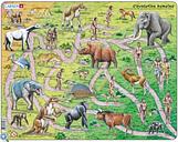 Puzzle Cadre - Evolution du Singe à l'Homme (en Français)