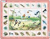 Puzzle Cadre - L'étang (en Hollandais)