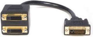 StarTech.com DVI-D to 2x DVI-D Digital Video Splitter Cable 0.3m Black