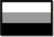 X-Rite ColorChecker Grayscale Balance Card (3 step) (w magazynie!)