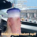Vaso de confeti que cambia de Color, vaso plástico reutilizable con tapa y pajita, taza fría, Pajita