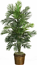 "Home Accent 56"" Areca Tree with Basket, Green"