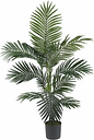 Home Accent 4' Kentia Palm Silk Tree, Green
