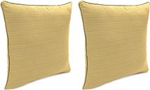 """Home Accents Outdoor Sunbrella Rain 18"""" x 18"""" Toss Pillow (Set of 2), Bamboo"""