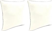 """Home Accents Outdoor Sunbrella 18"""" x 18"""" Toss Pillow (Set of 2), Salt"""