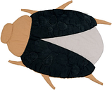 FABELAB - Quilted Blanket Beetle