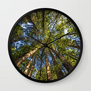 Coastal Redwoods Aka Coast Redwood And California Redwood (sequoia Sempervirens) Wall Clock by Thom Morris - Black - Black