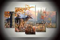 Deer Buck Open Field Hunting Wildlife Canvas Five Piece Framed