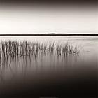 Andrew Ren - Ottowa River 1