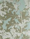 Osborne & Little Sherwood Wallpaper