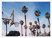 Paper Collective Cities of Basketball 02 (LA) poster