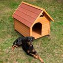 Caseta de madera Spike Classic para perros - M: 65 x 88 x 76 cm (An x P x Al)