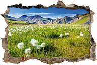 Dandelion on Alps Meadow Wall Sticker East Urban Home Size: 42cm H x 62cm W x 0.02cm D