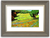 'Sunny Lawn In A Public Park ' Framed Photographic Print