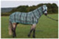 Belvoir Rug Company Honsie Original - Aqua Tiger Stripe with Aqua Trim - Small