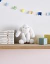 Jellycat Mini Smudge Bunny Toy