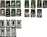 BW Distintivo de rango Luftwaffe flecktarn/blanco